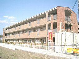 泉北高速鉄道 和泉中央駅 徒歩20分の賃貸マンション