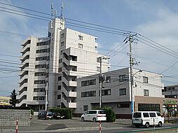 アーバンシティ金子[2階]の外観