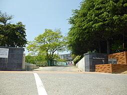 亀崎中学校 徒歩 約10分(約800m)
