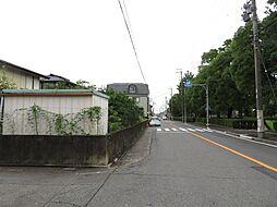 西側道路:惟信第二公園が向かいにあります。幅員が広く、交通量も多いです。