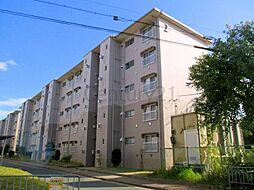 清和台住宅(公社分譲)[5階]の外観