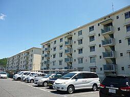 滋賀県東近江市五個荘石塚町の賃貸マンションの外観