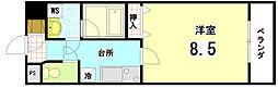 ペラパラスIII[4-B号室]の間取り