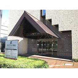 コンフォート新潟[410号室]の外観