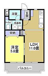 静岡県磐田市富士見町1丁目の賃貸マンションの間取り