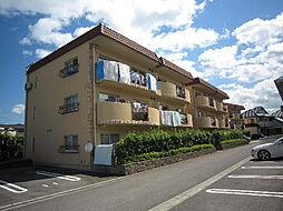 愛媛県松山市南梅本町の賃貸マンションの外観