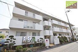 新賀暁マンション[1階]の外観