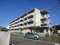 クラウンズマンション天川大島[202号室]の外観