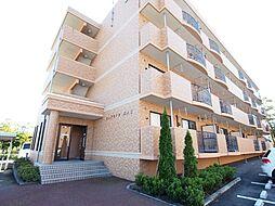 新潟県新潟市西区坂井の賃貸マンションの外観