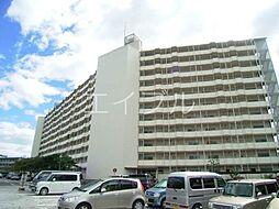 鏡川コーポA棟[11階]の外観