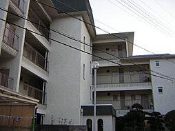 北夙川ハイツ[103号室]の外観
