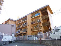 阪和ハイツ[4階]の外観