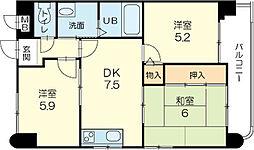 兵庫県姫路市飾磨区野田町の賃貸マンションの間取り