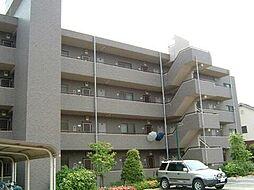 山梨県甲府市池田3丁目の賃貸マンションの外観