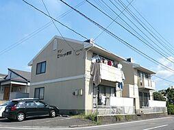 サン・セジュール野田[102号室]の外観