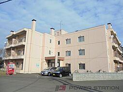野幌ハイツ[2階]の外観