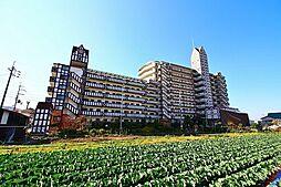 ブリティッシュティンバー泉佐野[7階]の外観