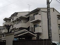エバグリーン飯村[3階]の外観