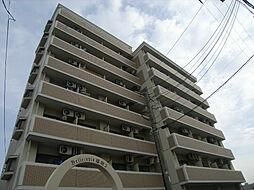 ベルトピアエグゼ福岡[6階]の外観