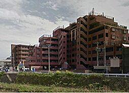 ルネッサンス21リバーサイド城南[6階]の外観
