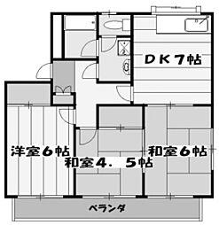 埼玉県さいたま市大宮区堀の内町1丁目の賃貸マンションの間取り