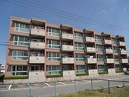 YNT第1マンション[206号室]の外観