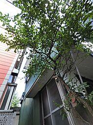 [一戸建] 神奈川県横須賀市安浦町2丁目 の賃貸【神奈川県 / 横須賀市】の外観