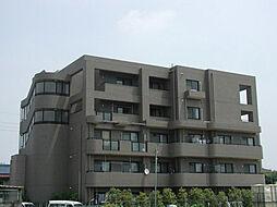 京都府京都市南区吉祥院西ノ庄西浦町の賃貸マンションの外観