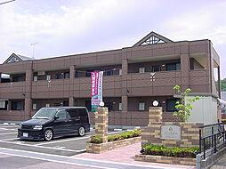 広島県福山市加茂町字上加茂の賃貸マンションの外観