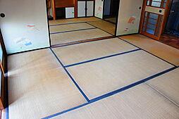 JR片町線(学研都市線) 西木津駅 徒歩4分 7DKの内装