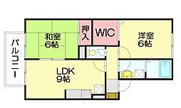アセラフジ[2階]の間取り