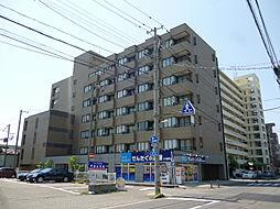 リバーサイド新潟[203号室]の外観