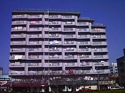 ターミナルマンション朝日プラザ堺[3階]の外観