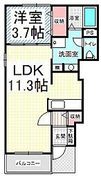 シャルマン櫻街[1階]の間取り