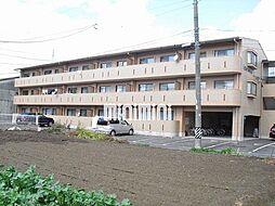 愛知県一宮市猿海道1丁目の賃貸マンションの外観