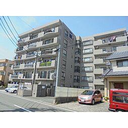 静岡県浜松市南区古川町の賃貸マンションの外観