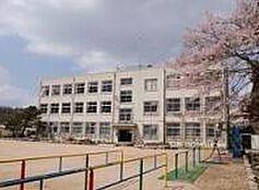 小学校神戸市立 有馬小学校まで907m