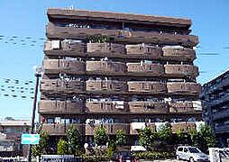 ドミー渡辺[1階]の外観