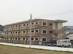紀伊田辺駅 5.9万円