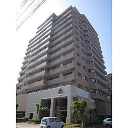 信開クレベール金沢駅西[1406号室]の外観