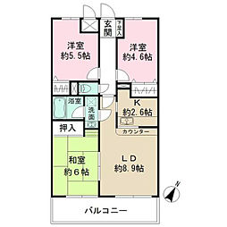 神奈川県横浜市南区白妙町5丁目の賃貸マンションの間取り