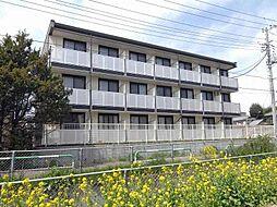 埼玉県さいたま市南区大字円正寺の賃貸マンションの外観