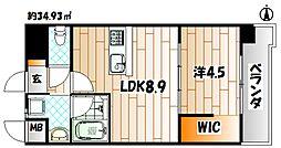 Apartment3771[5階]の間取り