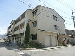 長野県松本市鎌田2丁目の賃貸マンションの外観