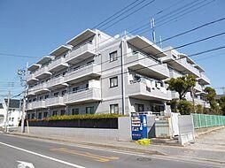 千葉県柏市豊上町の賃貸マンションの外観