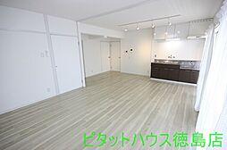 スカイハイツ新田[206号室]の外観