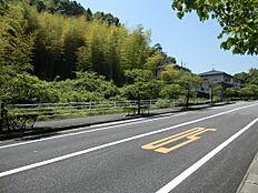 現地は竹藪が生い茂っていますが、広い公道に面しており小方が丘やゆめタウン徒歩圏内で人気のエリアです。