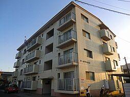 福岡県太宰府市国分3丁目の賃貸マンションの外観