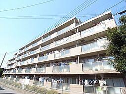 レジデンス柏[5階]の外観