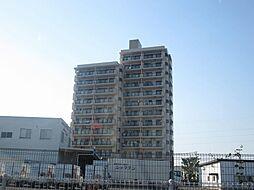 建物全景です。13階建ての12階が専有部分です。周囲に背の高い建物がないので、眺めがよく、陽もよく入ります。